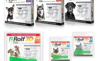 Thả Rolf Club 3D từ bọ chét cho chó và mèo