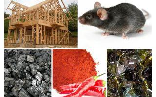 Bảo vệ khung nhà chống chuột