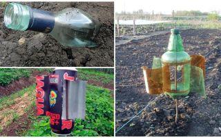 Làm thế nào để loại bỏ nốt ruồi từ nhà nước hoặc vườn