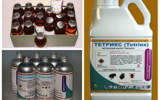 Tetrix khắc phục cho bedbugs