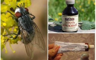 Biện pháp khắc phục cho các loài bướm và chuồn chuồn cho con người