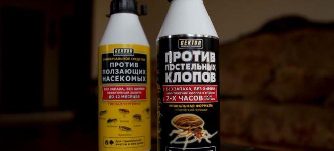 GEKTOR chống lại rệp và côn trùng bò