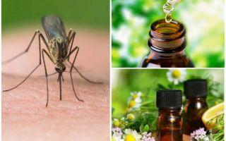 Tinh dầu từ muỗi
