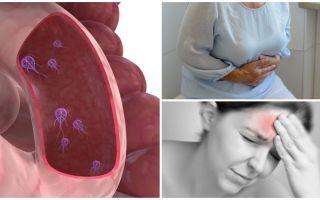 Làm thế nào để xác định sự hiện diện của Giardia trong cơ thể con người