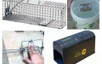 Bẫy chuột DIY