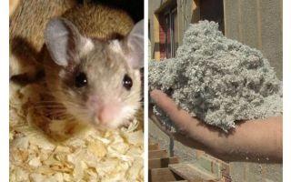 Loại vật liệu cách nhiệt nào không ăn chuột