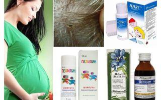 Cách điều trị pediculosis trong thai kỳ và cho con bú