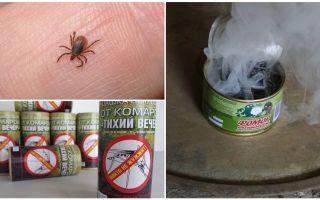Làm thế nào để bảo vệ mình khỏi bọ ve, bảo vệ khỏi vết cắn