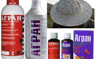 Agran Muỗi Biện pháp khắc phục
