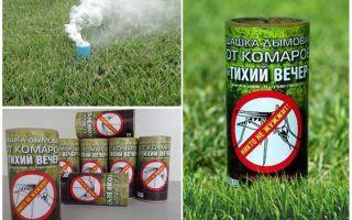 Bộ kiểm tra khói tốt nhất cho muỗi