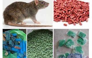 Chất độc chuột