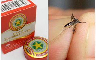 Muỗi sao Balsam