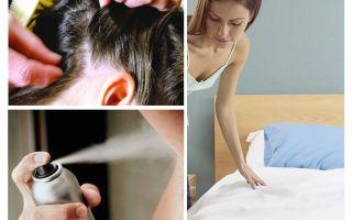 Ghi nhớ về pediculosis cho cha mẹ