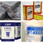 Phương pháp dân gian từ chuột