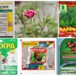 Hóa chất độc hại bảo vệ thực vật