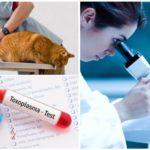Xét nghiệm nhiễm giardia